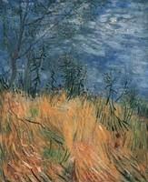 Van Gogh - Paysage