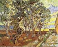 Van Gogh - Près de l'Hôpital Saint-Paul