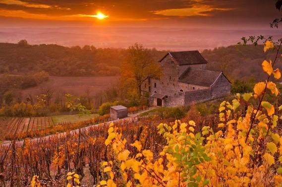 Vignes de Cerdon, Ain