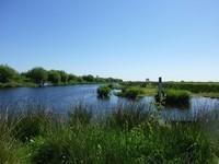Parc Naturel régional de la Brière