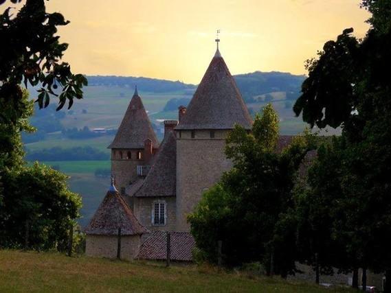38 Château de Virieu