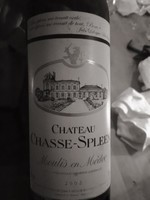 Chateau Chasse-Spleen Moulis 2002