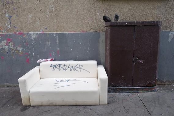 pigeons et canapé