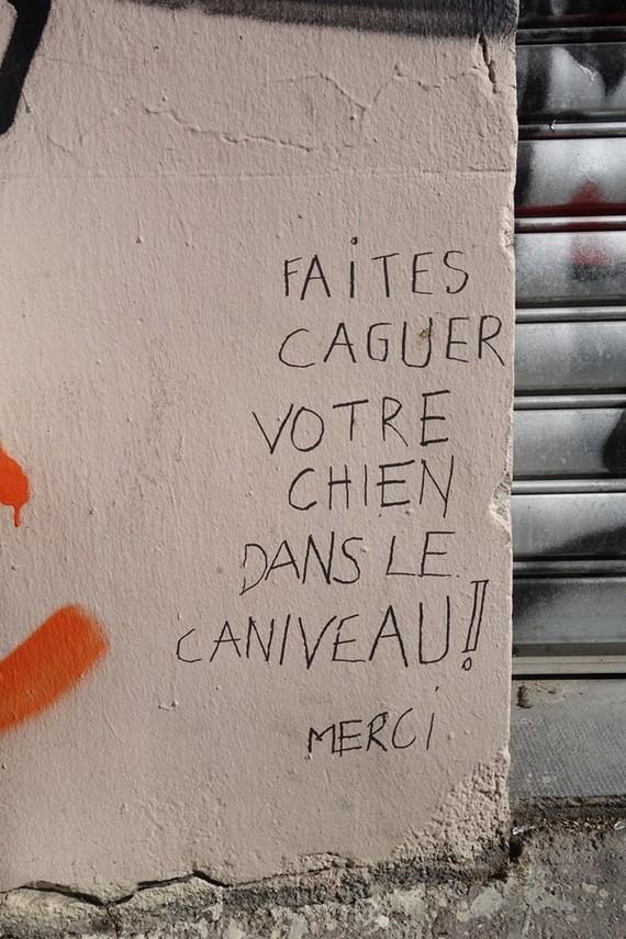 chien Marseille 20180430