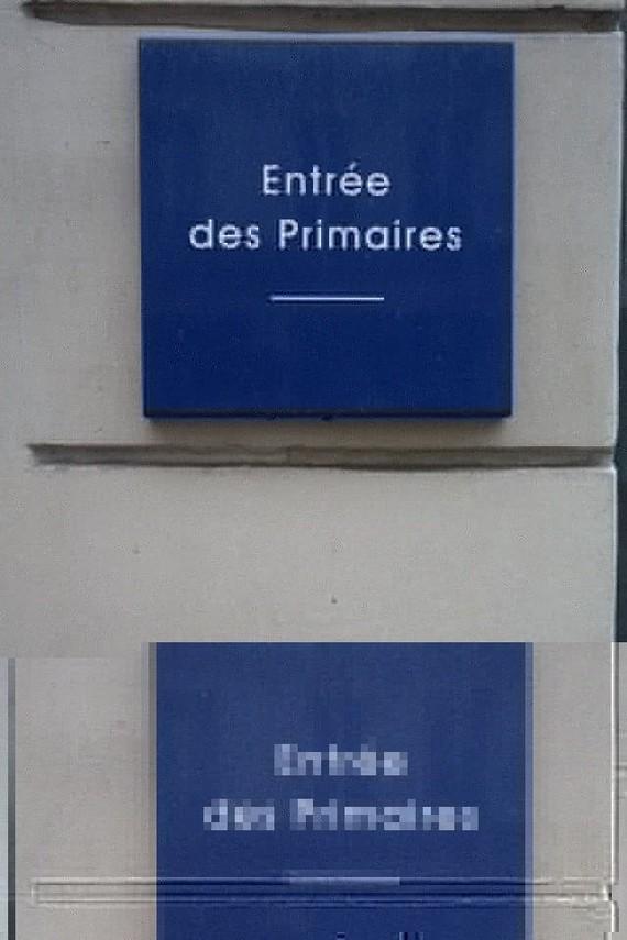 primaires