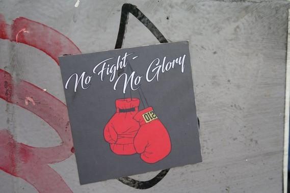 no fight