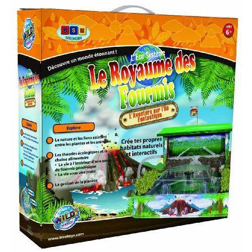 le-royaume-des-fourmis