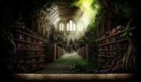 bibliotheque-de-blanche-espine1