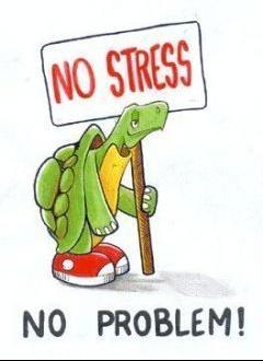 stress pas