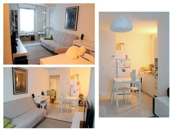 d m nagement en appartement 4 chats chats forum animaux. Black Bedroom Furniture Sets. Home Design Ideas