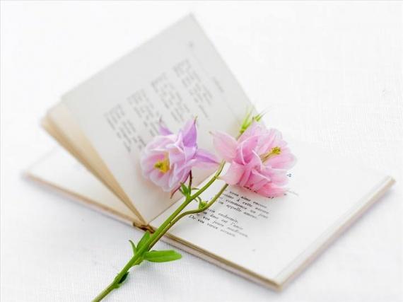 Espérance... Poesie-dt025-fleur-bleue-img