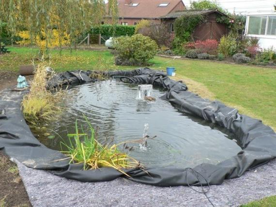 Les premi res plantes aquatiques la bassin aquatique de moksha moksha p - Photo bassin aquatique ...
