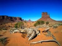 desert.65244