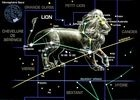 Lion72ppp