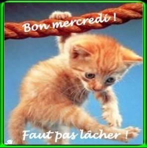bon_mercredi_faut_pas_lacher