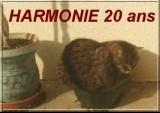 harmonie%2020%20ans