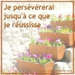 volonte-perseverance-L-1