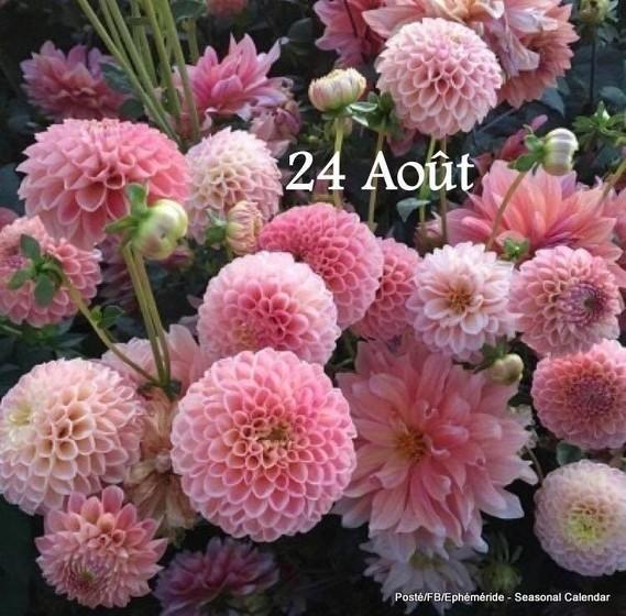 4EABD643-16C7-4E9A-8C18-B5084B469469