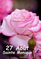 7ECDB413-9B67-4F4E-ADA1-AB00A669DCBD