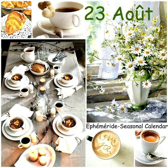 ED3E5514-96B5-4833-9A4E-CC0D800B033A