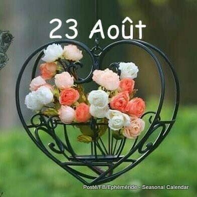 A1A7F7D1-D6E2-4F9D-ACF8-AB8AC94E038B