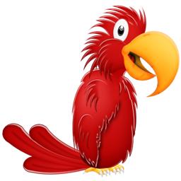 perroquet-10217