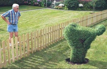 Entourez plutôt votre maison de pierres que de voisins.!!!! private-category-mauvais-voisin-img