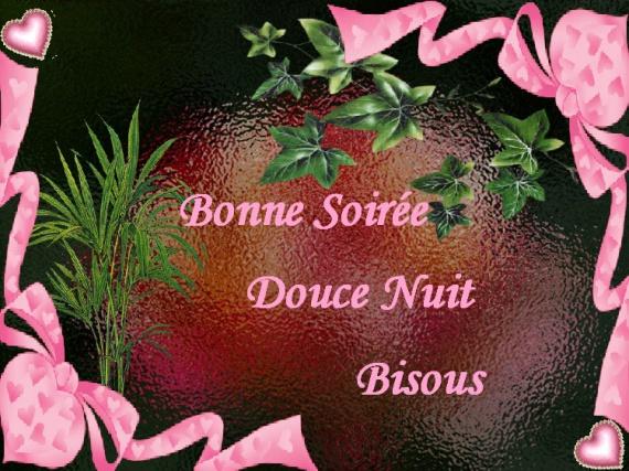 bonne-soiree-soiree-douce-bisous-img