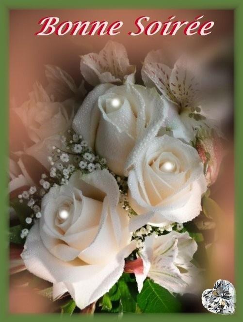 bonne-soiree-soiree-jolies-roses-img