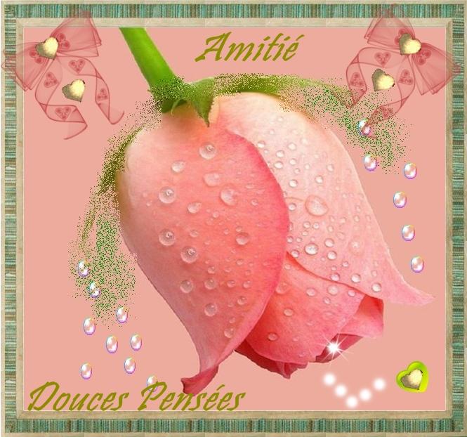 amitie-amitie-douces-pensees-big