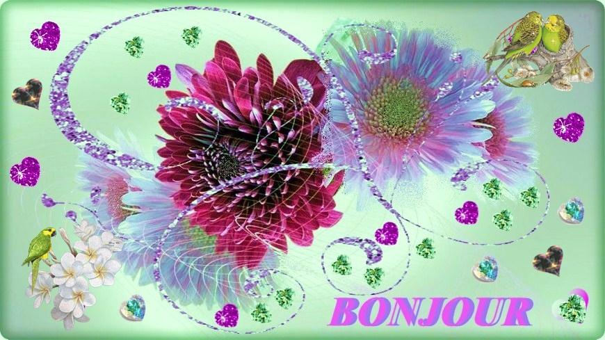 GIOVEDI 6 GIUGNO, SALUTIAMOCI IN QUESTA SEZIONE Bonjour-bonjour-fleurs-jolies-big