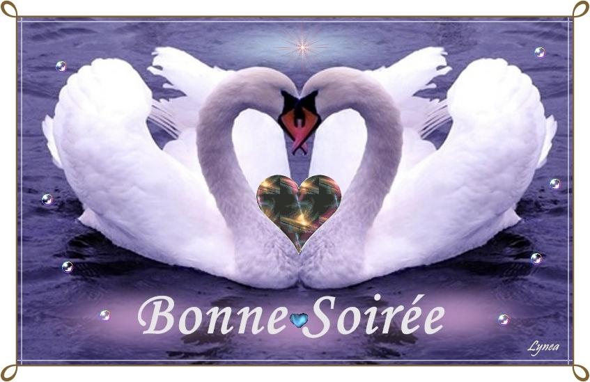 Bonne soiree coeur bonne soiree lynea18 photos club doctissimo - Images avec des coeurs ...