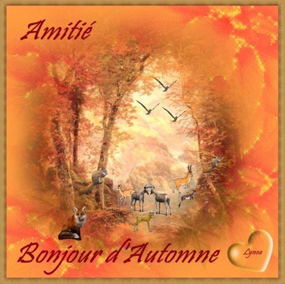 BONJOUR D AUTOMNE AMITIE