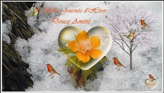 BELLE JOURNEE D HIVER. DOUCE AMITIE FLEUR