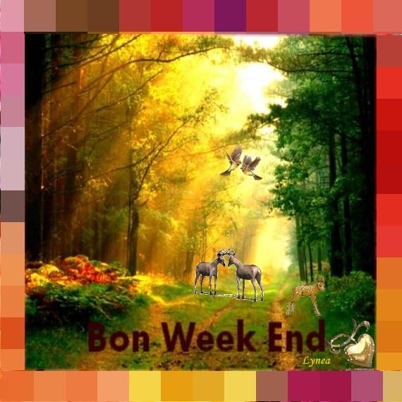 BON WEEK-END BOIS
