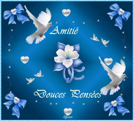 DOUCES PENSEES AMITIE