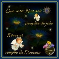 bonne soirée-douce nuit-beaux rêves-amitié fleurs anges de lynea