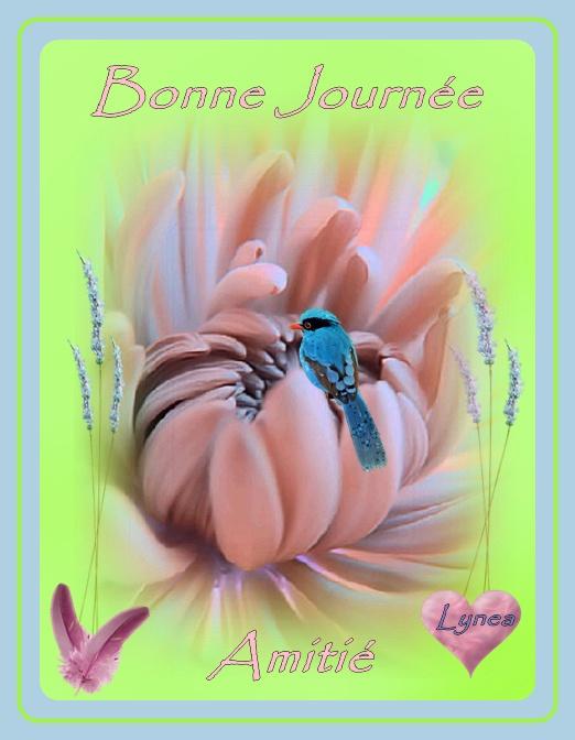 bonne journée amitié fleur oiseau lynea