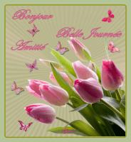 bonjour-belle journée amitié tulipes de lynea