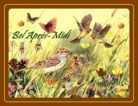 bel après-midi oiseaux papaillons lynea