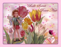 belle soirée-douce nuit fleur et ange lynea