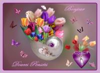 bonjour douces pensées de lunea tulipes