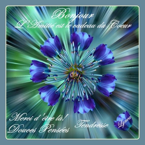 bonjour-merci d'être là, l'amitié est le cadeau du coeur de lynea