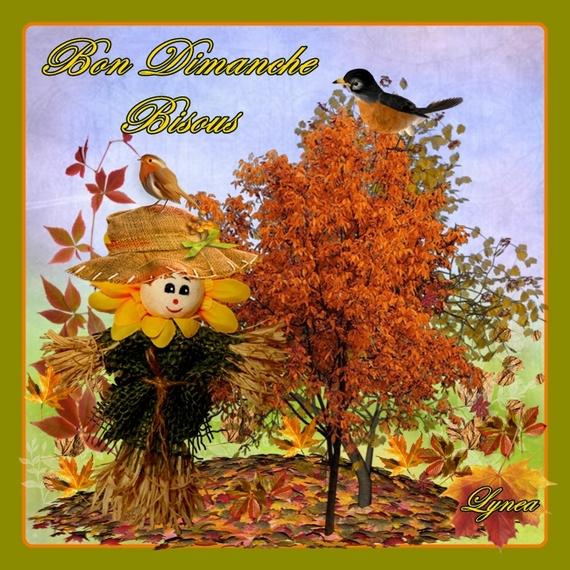 Dimanche 10 novembre Bon-dimanche-dimanche-bonhomme-automne-img