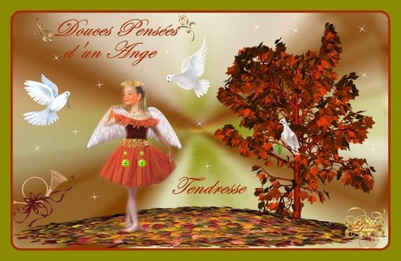 douces pensées d'un ange-tendresse l'ange de lynea