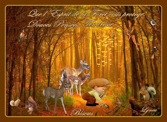 que l'esprit de la forêt vous protège-douces pensées-tendresse-bisous forêt de lynea
