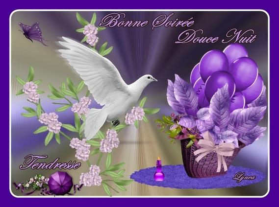 bonne soirée-douce nuit-tendresse colombe de lynea