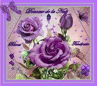 douceur de la nuit-tendresse -bisous roses mauves de lynea