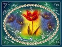belle nuit-doux rêves fleurs et col de lynea