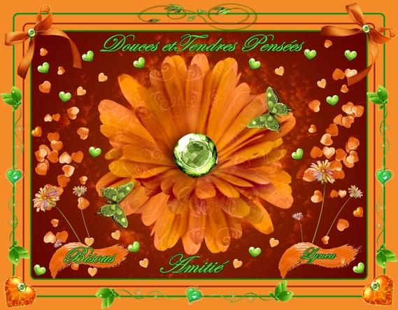 douces et tendres pensées-bisous fleur feu de lynea